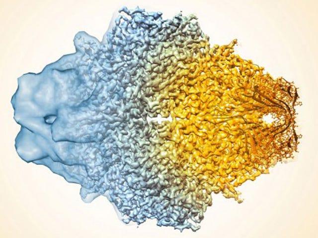 Deze afbeelding laat zien hoeveel elektronenmicroscopen zijn verbeterd