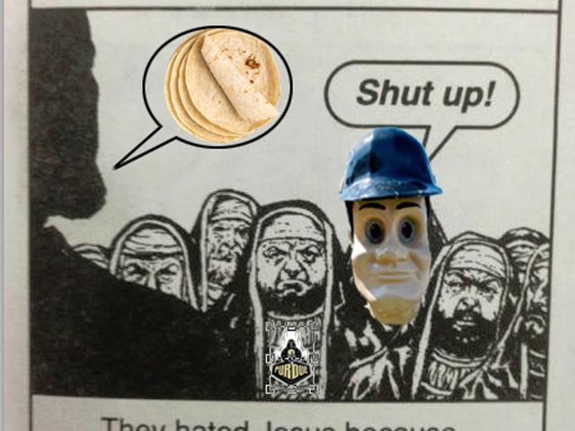 Hold Oppo Tortilla