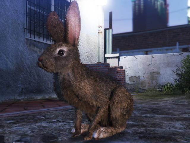 Los jugadores de GTA Online se divierten como animales
