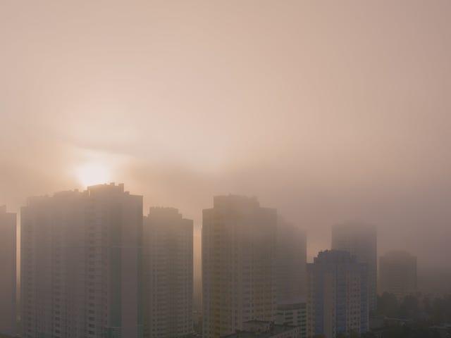 Sehen Sie, wie die Luftverschmutzung Ihrer Stadt mit der weltweit schlechtesten verglichen wird