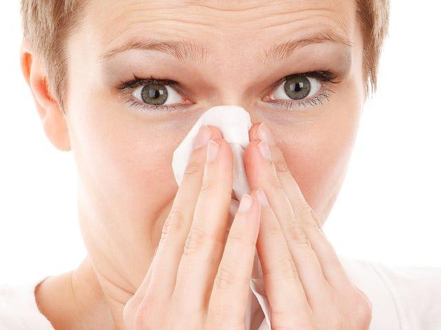 Por qué cuando te resfrías o sufres alergia una mitad de la nariz siempre está más congestionada que la otra