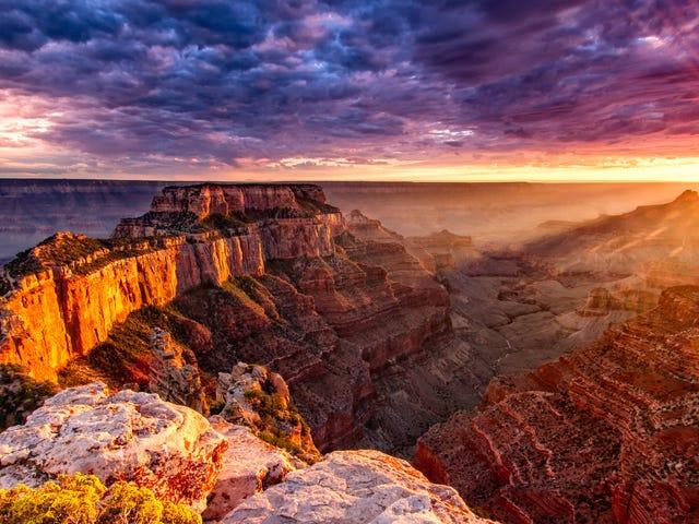 Национальные парки будут свободны в эти 5 дней в 2020 году