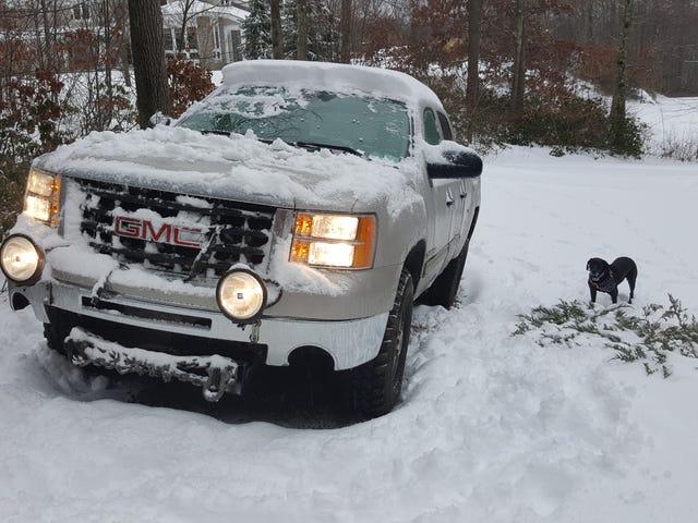 Zorunlu Kar Fotoğrafları