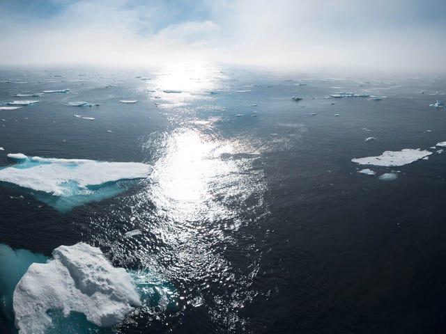 Sådan taler du med dine venner og familie om klimakrisen