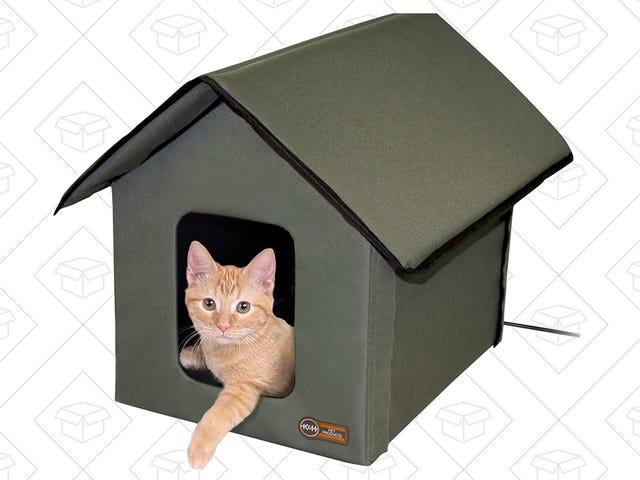 この冬、あなたの屋外(または屋内)猫に暖かい家庭を与える
