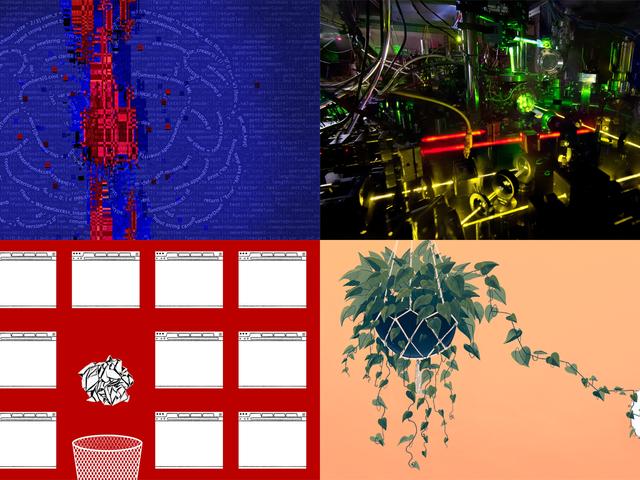 Le piante più intelligenti del mondo, gli orologi atomici e la cacca di balena: le migliori storie di Gizmodo della settimana