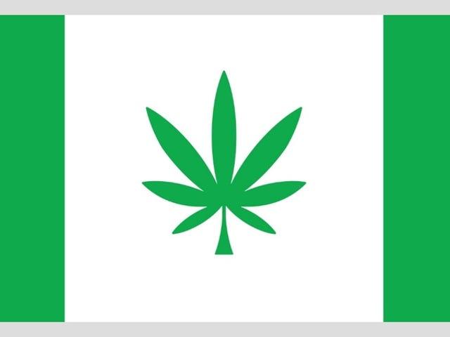 Someten a votación por Internet la bandera de la ciudad. Lo que ocurrió después no te sorprenderá