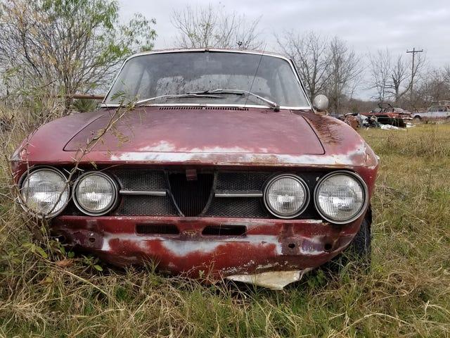 Há um campo de velhos Alfa Romeos apenas esperando você levá-los para casa