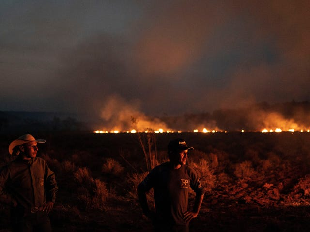 Brasilien distribuerar trupper för att bekämpa eldbränder efter ett omfattande raseri vid Bolsonaros regering