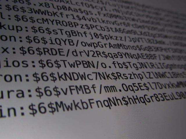 Använd falska svar på frågor om onlinesäkerhet