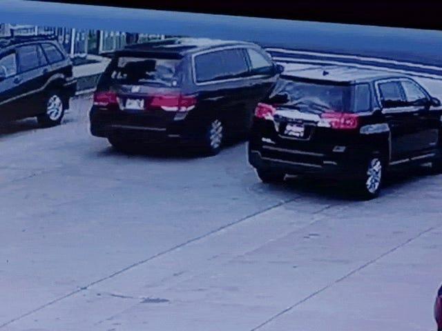 Vendedor de concessionárias casualmente bate a janela de um carro sendo roubado do lote