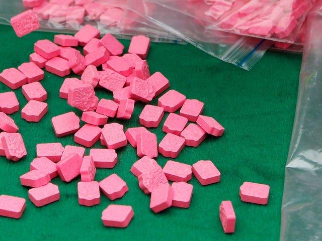 Vetenskaps professor erkänner med jämna mellanrum att göra MDMA med sina studenter för vad helvetet