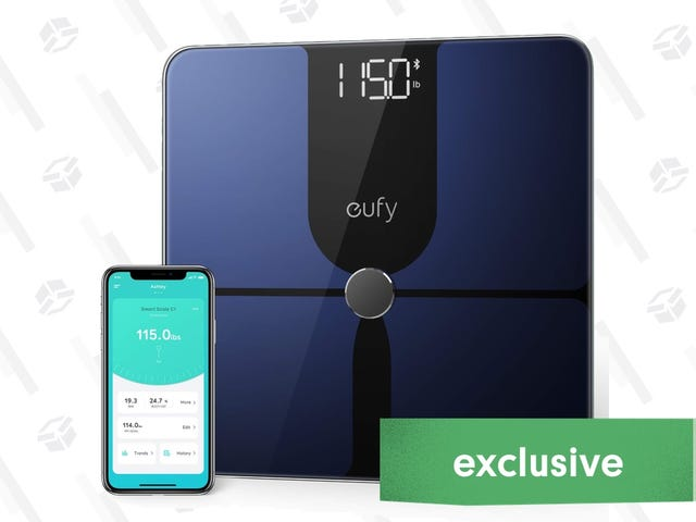 Anker's Newest Smart Scale Went On a Price Diet