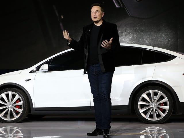 Ayuda Elon Musk vender Teslas y él le recompensará por dejarle cavar un túnel para él