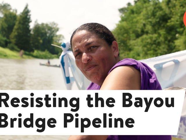"<a href=""https://splinternews.com/we-have-to-fight-indigenous-activists-resist-louisia-1818511019"" data-id="""" onClick=""window.ga('send', 'event', 'Permalink page click', 'Permalink page click - post header', 'standard');"">'We Have to Fight': Indigenous Activists ResistLouisiana'sBayou Bridge Pipeline</a>"