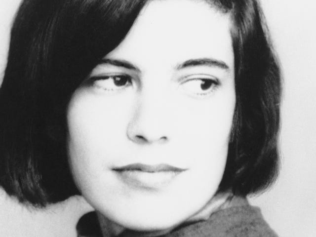 New Biography Reports Susan Sontag Authored Ex-Husband's Book