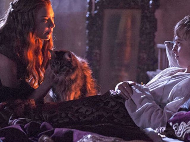 Whoever wins, we lose: Ser Pounce has lost the game of thrones<em></em>