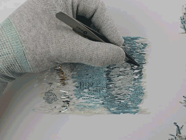 Watch the Most Patient Person on Earth Reconstruct Shredded Money Using Tweezers