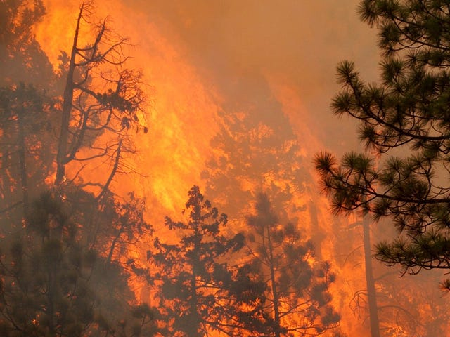 Nearly 1.5 Million Acres Are Burning Across the West: What You Need to Know Right Now