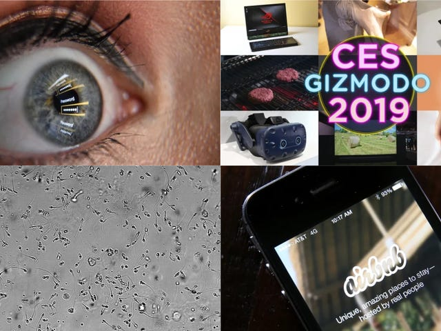 Airbnb Spying, a Monster Breach, and Intravenous Semen Injection: Best Gizmodo Stories of the Week