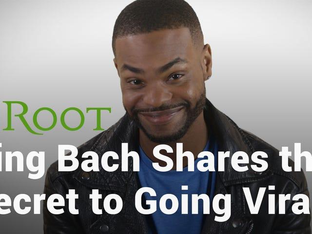 Mira: el rey Bach nos enseña cómo hacer un video viral