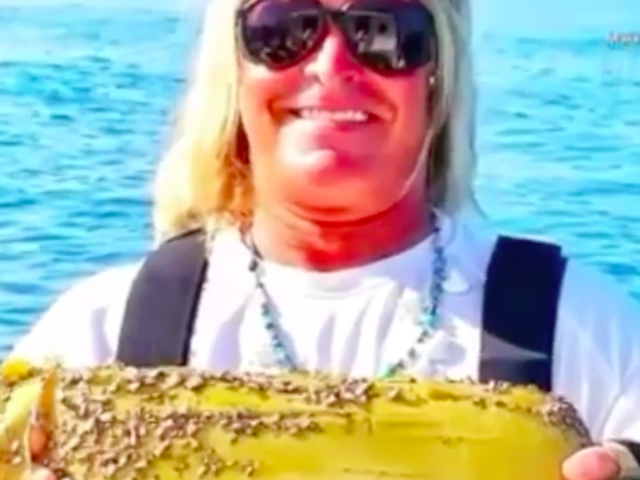 Instagram着名的渔夫'标记鲨鱼'钩住可卡因砖
