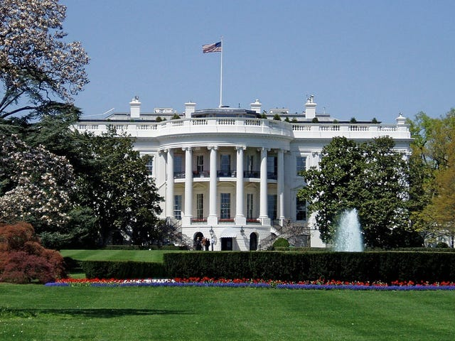 And Now the White House Has Climbed Aboard the AI Bandwagon