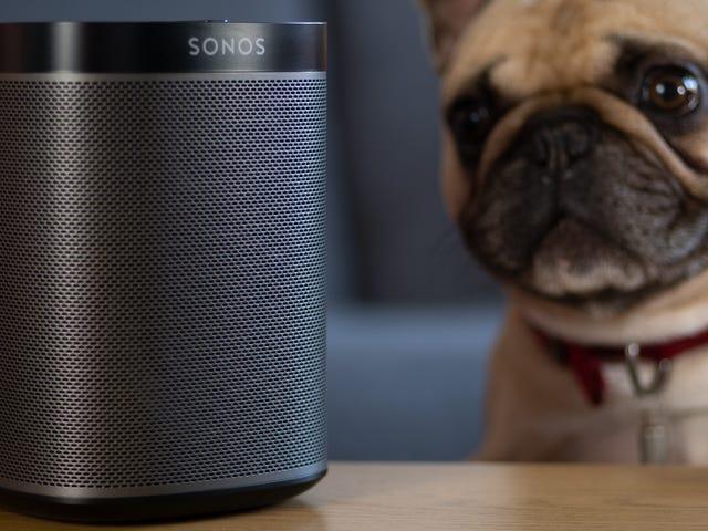 为什么我的智能扬声器无法正确播放音乐?