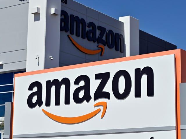Senator ber DOJ att inleda en kriminell utredning i Amazons algoritmiska monopol