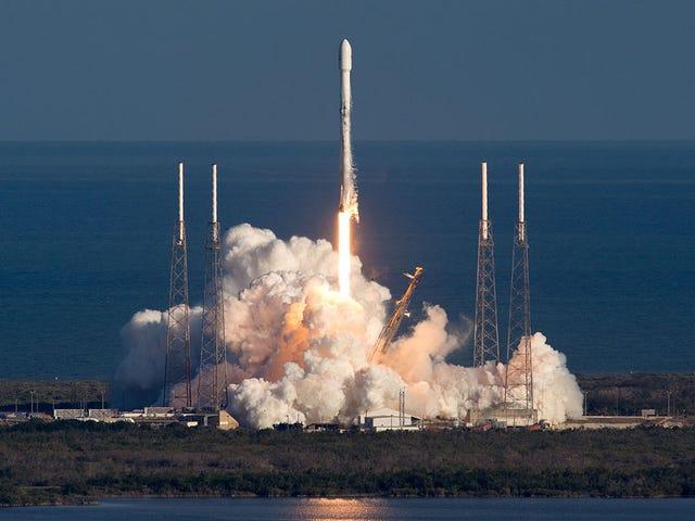 Starlink, en forbedret proyecto de Musk para conectarse et Internett med unntak av de 12.000 satellittene