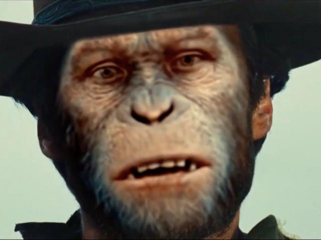 Bugün derinlerde: Herkes lanet bir kirli maymun