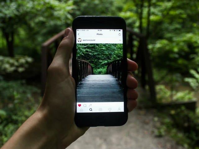 Instagram escucha tus quejas y dice que mejorará su algorithmo para que veas fotos más nuevas