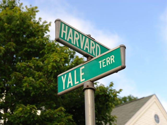 Ohio Quadruplets All Earn Entry to Yale, Harvard