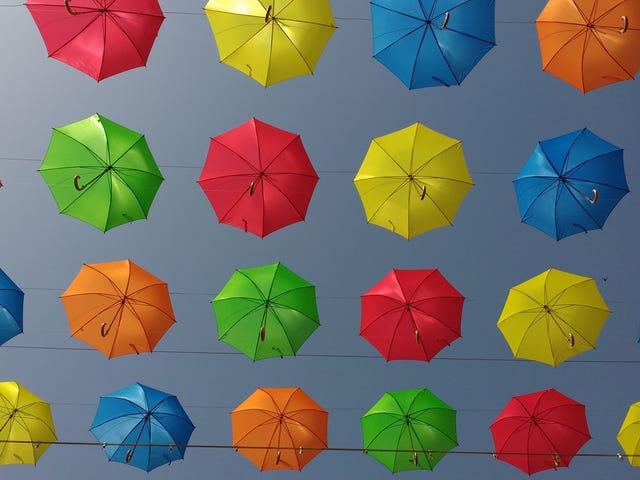 Ano ang Pinakamagandang Umbrella?