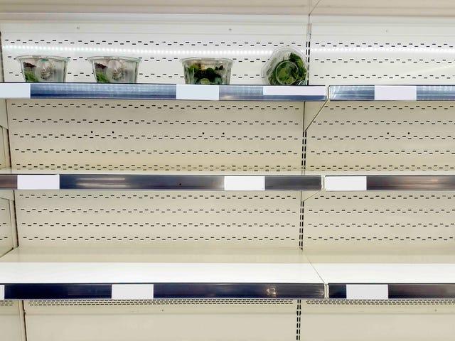 W Portland sklepach spożywczych zabrakło jarmużu przed wielką śnieżycą