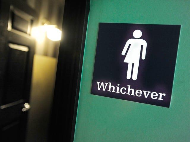 Giudice del Magistrato Federale Sides With Transgender Teen in Ill