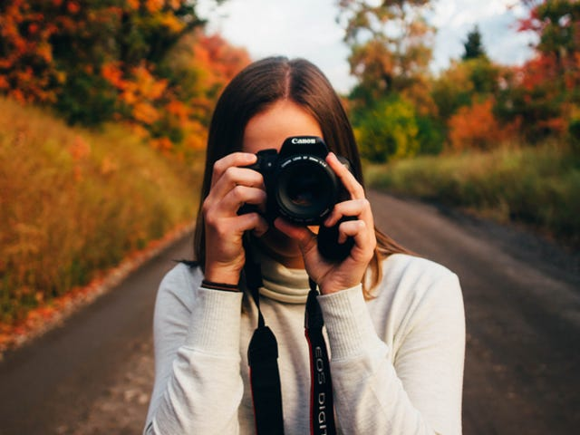 Save Hundreds On Lifetime Access To Hollywood Art Institute's Photography Training ($19)