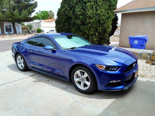 Mustang: Svended