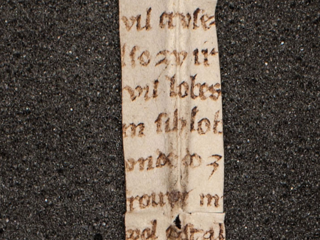 Fragment of Medieval Poem About a Talking Vulva Found in Austrian Library