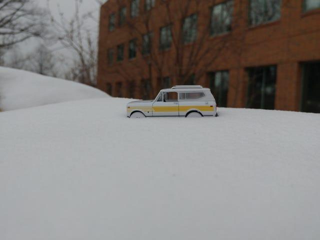 Pearl White In White Snow