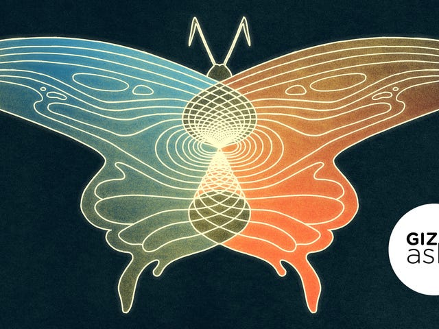 Is the Butterfly Effect Real?