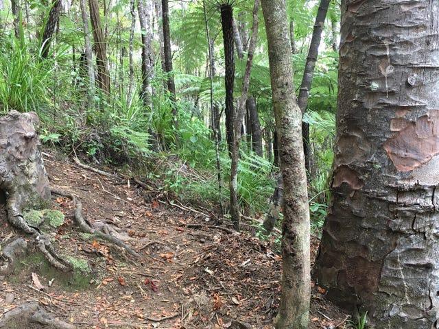 Undead Tree Stump bliver holdt levende af naboer