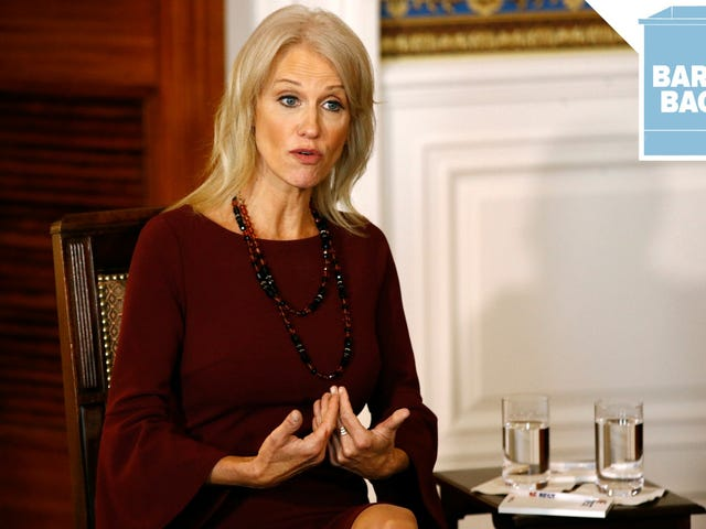 Kellyanne Conway Would Like to Know What Your Job Is, Exactly