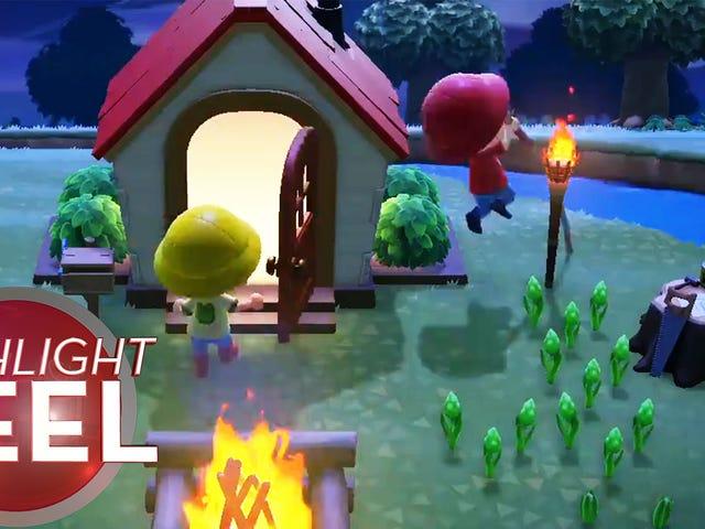 Animal Crossing Pole-vaulter Sets Record