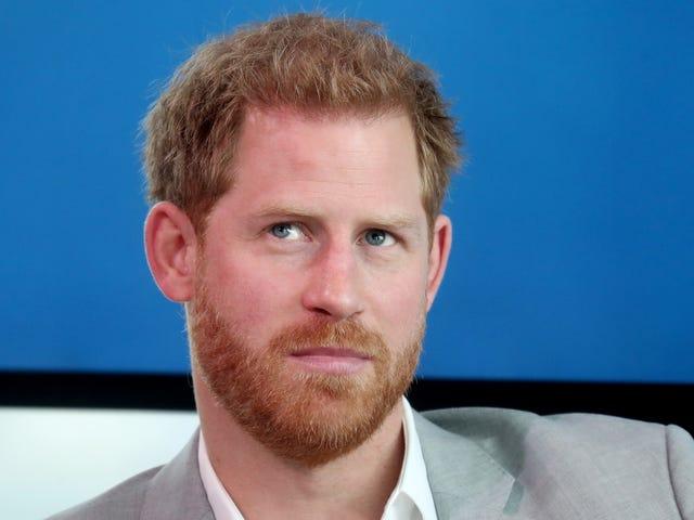 Il principe Harry giura che la sua famiglia vola in pubblicità