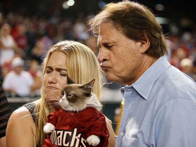 Tony La Russa Mengucapkan Perpisahan Kepada Temannya, Kucing Pemarah