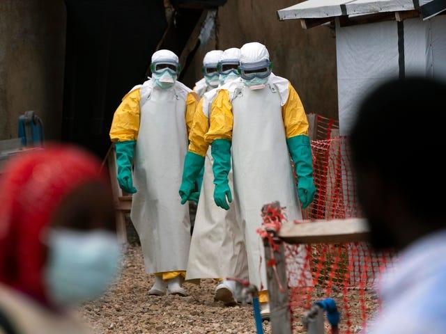 Los datos preliminares muestran que dos nuevos medicamentos contra el ébola disminuyen drásticamente las tasas de mortalidad