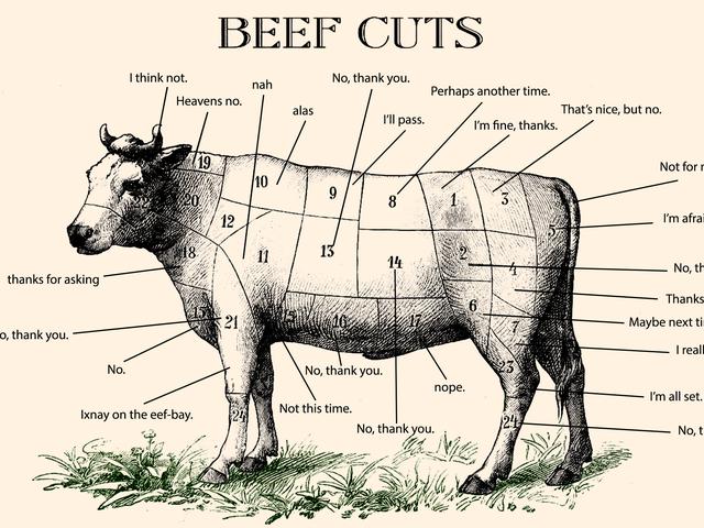 Cómo rechazar educadamente las cosas como vegano