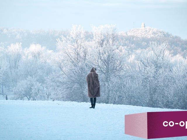 Baselayer ที่ดีที่สุดสำหรับสภาพอากาศหนาวเย็นคืออะไร?