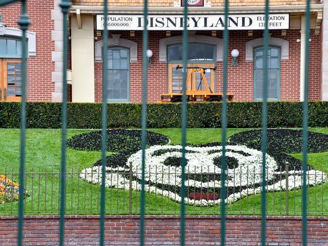 Tanrıya şükür, tema parklarının nasıl yeniden açılacağına dair planlar çalışıyor